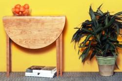 Полукруглый складной столик